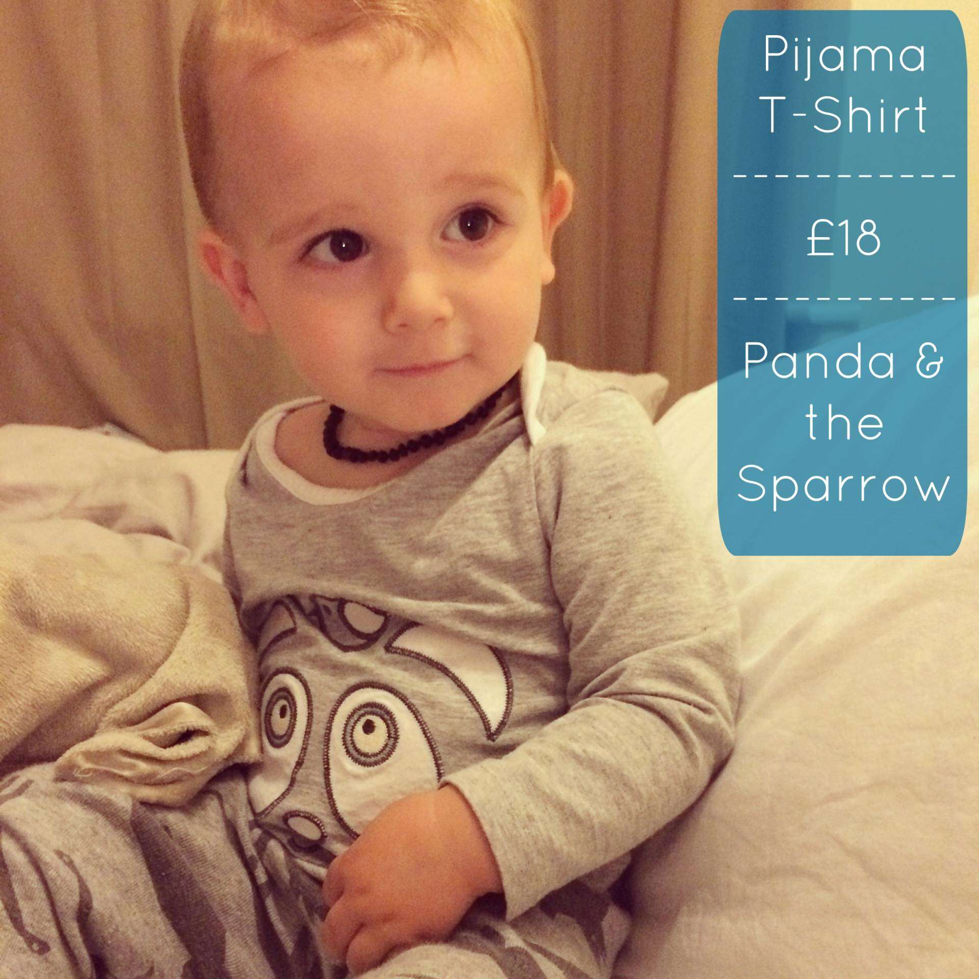 Panda and the sparrow