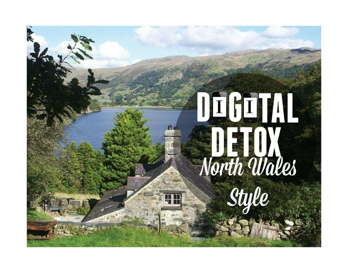 Digital Detox North Wales Style, Digital Detox 1%, new-dad%