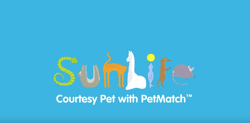 SunLife Launches Courtesy Pet Care, Screen Shot 2016 03 31 at 20.41.51%, lifestyle%