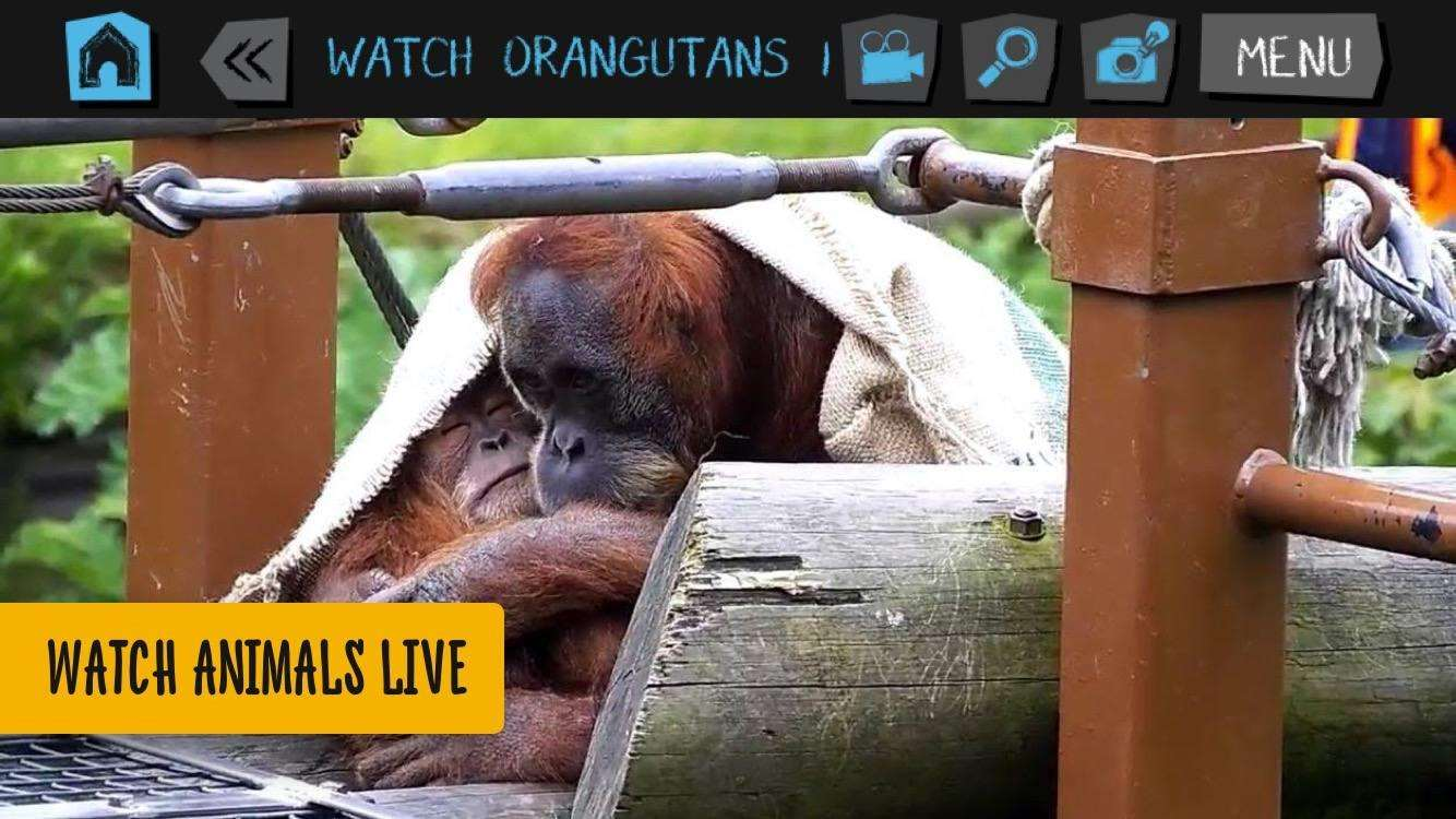 Get Your Kids Into Wildlife Conservation With This Amazing New APP, img 5115%, lifestyle%