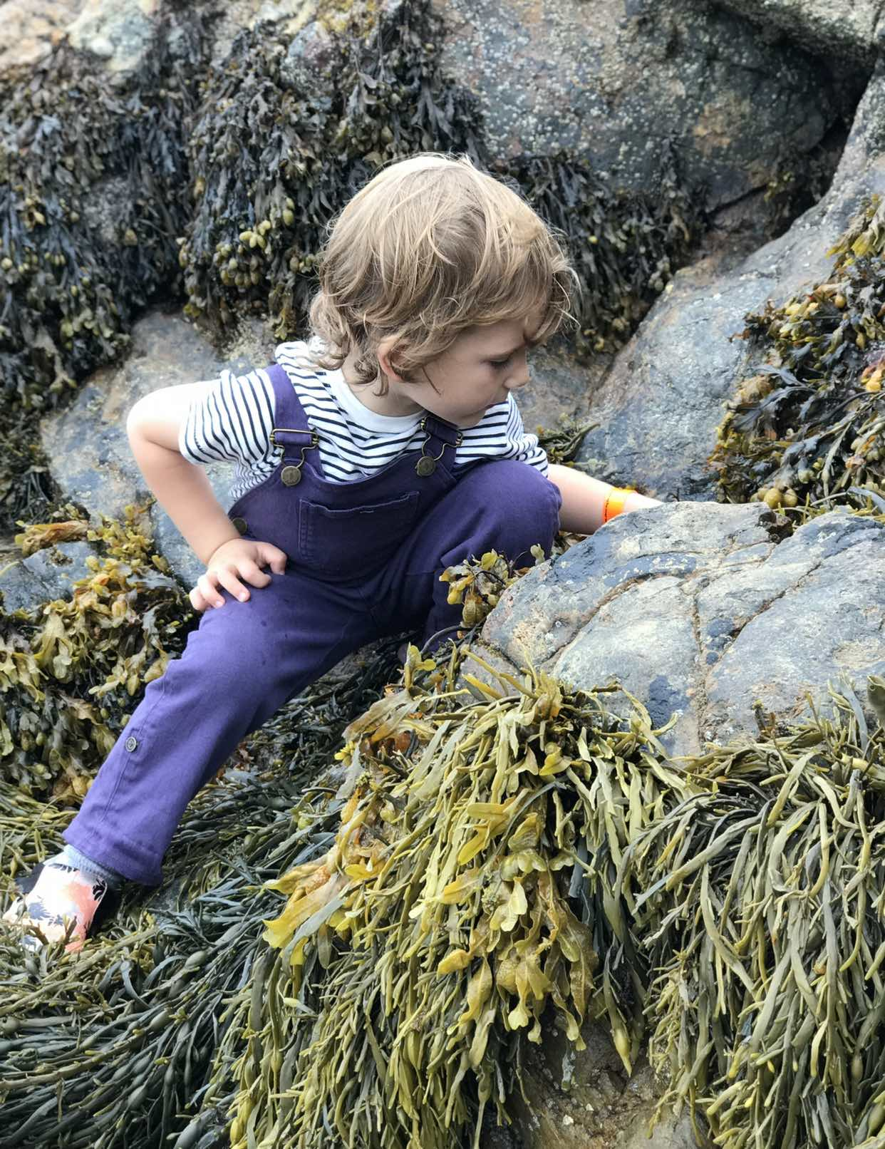 Why North Wales is a Great Family Holiday Destination | Haven Holidays, IMG 0254%, product-review%