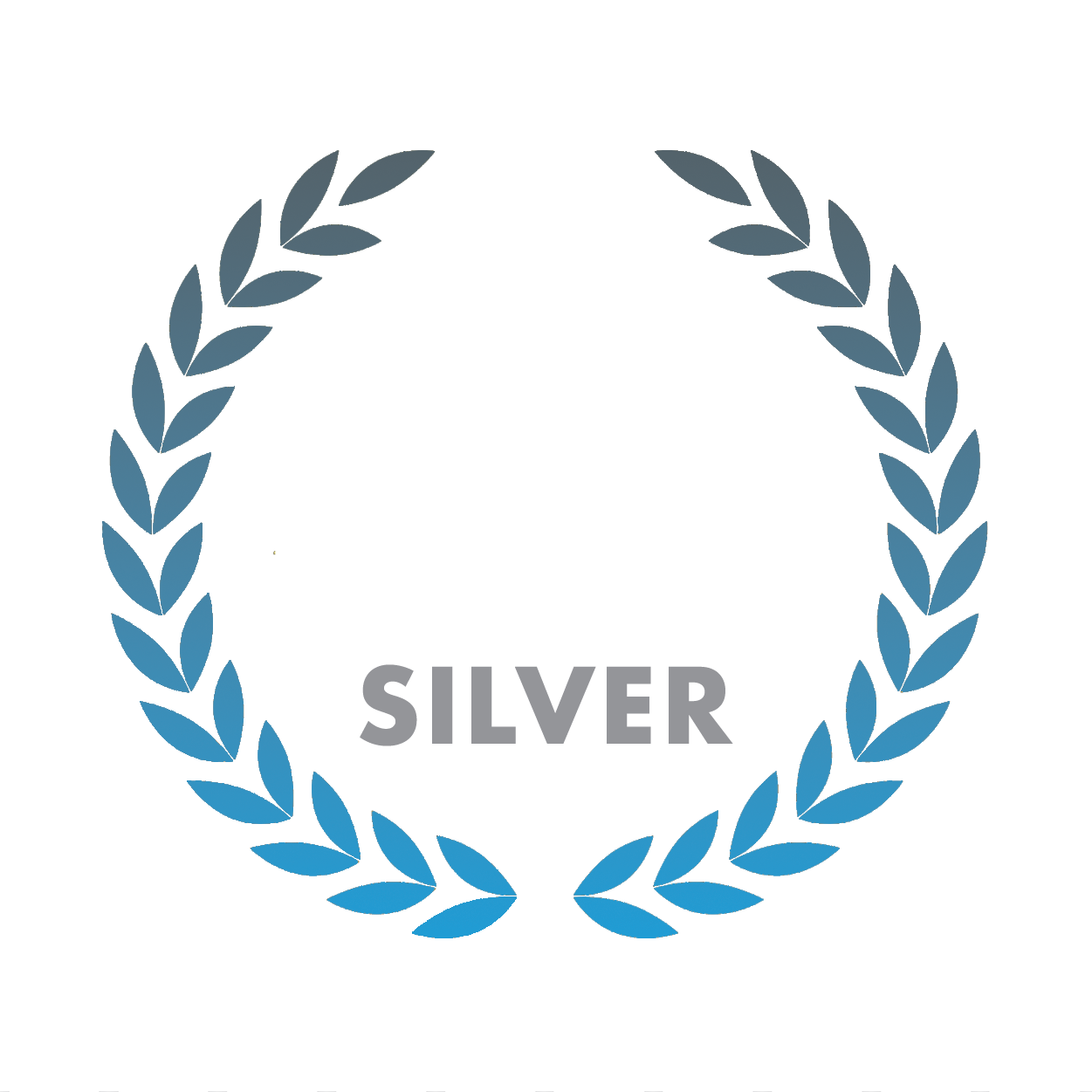 Download your hi-res award badge, Dadsnet Product20Awards Silver%, %