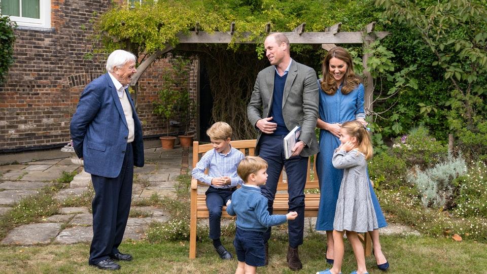 Sir David Attenborough reveals favourite animal to royal children, 2.55733071%, daily-dad%