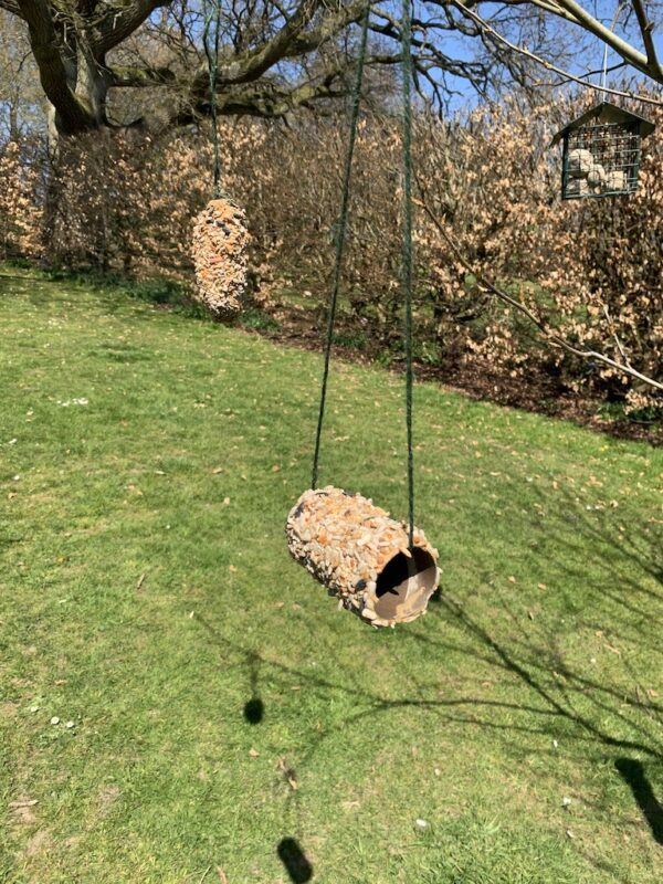 Earth Day Bird Feeder to Make with Kids, IMG 1677%, daily-dad, education, 6-9, 4-5%