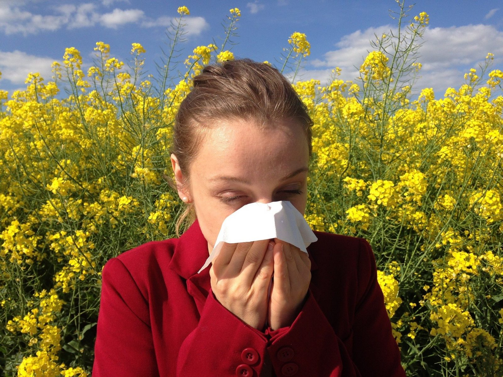 Hay Fever Hacks For Parents, allergy 1738191 1920 1600x1200%, health%