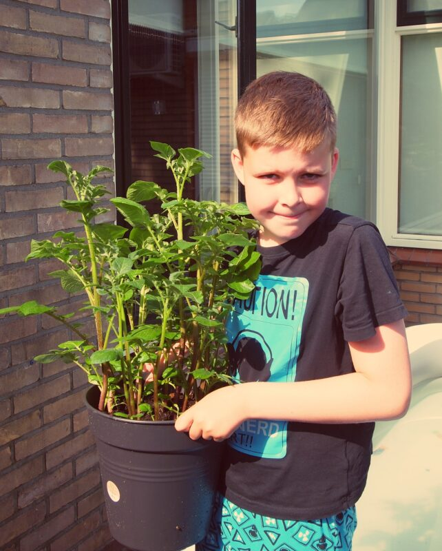 Plants that are easy to grow with children, boy 831648 1920%, daily-dad, lifestyle, featured, 6-9, 4-5%