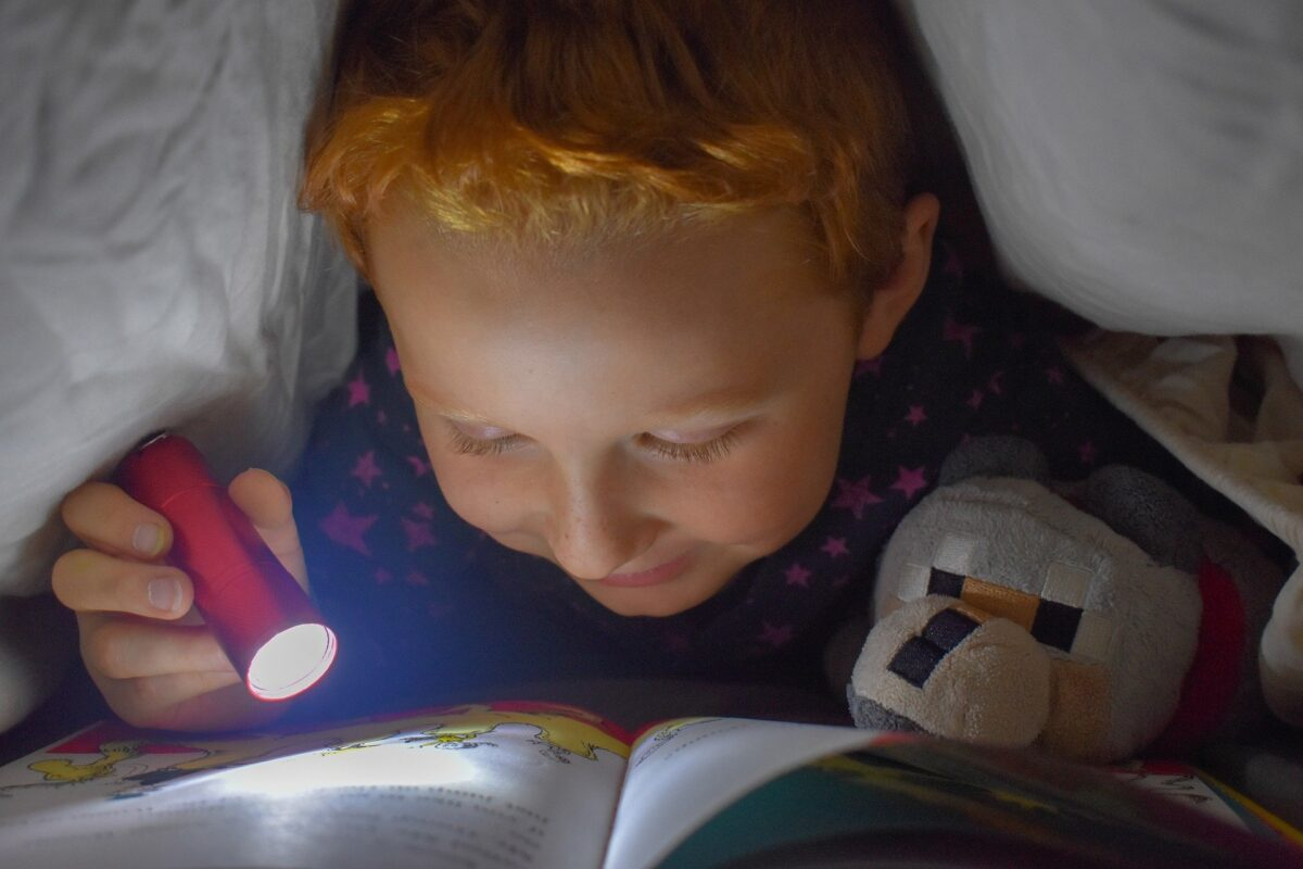 Primary school pupils read 'longer books of greater difficulty' during lockdown, reading 5069826 1920 2%, daily-dad, 6-9, 4-5%