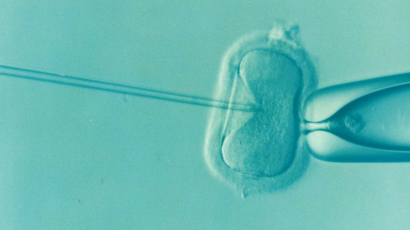 Storage limit for frozen eggs, sperm and embryos to be increased to 55 years