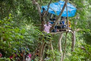 Children in Sri Lanka climb trees to access online school