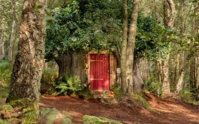 Home, A house fit for Disneys Winnie the Pooh in the original Hundred Acre Wood 400x250%, %