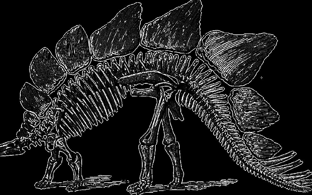 Home, dinosaur 148318 1280 1080x675%, %