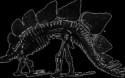 Spiky fossil of new dinosaur species found