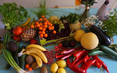 Children who eat more fruit and veg have better mental health