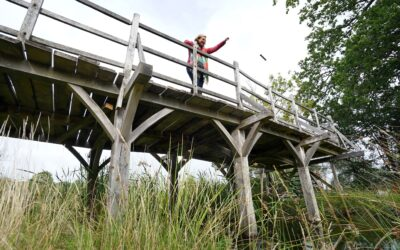 Winnie the Pooh's Poohsticks Bridge sells for £131,000